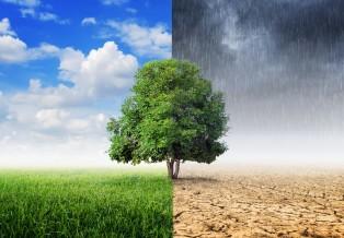 Imagem interferência clima produção