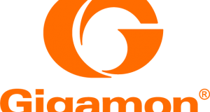 Web Gigamon Free Standing Orange Logo