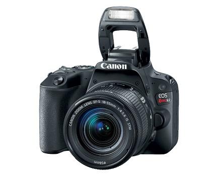 Câmera Canon EOS SL2 o lançamento