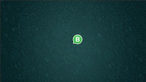 Símbolo do WhatsApp Business em um fundo verde musgo
