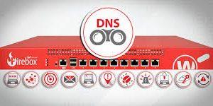 DNS protegido por WatchGuard