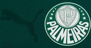 Símbolo do Palmeiras em fundo verde