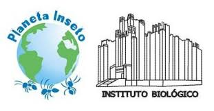 Banner do Planeta inseto e do Museu