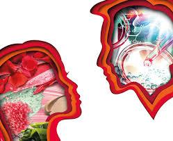 mostrando órgãos internos2 cabeças se olhando