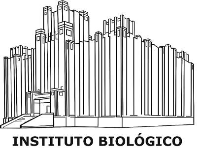 Desenho logomarca do IB