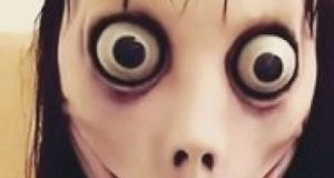 Boneca momo