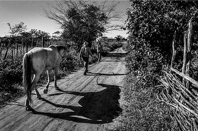 Homem e cavalo 13º Prêmio New Holland de Fotojornalismo