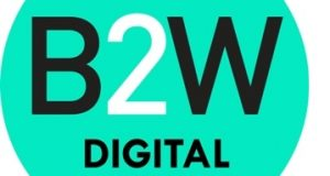 Logomarca B2W Programa Summer Job 2020