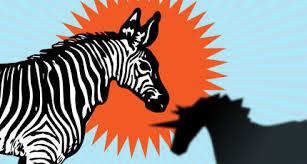 zebras e unicórnios