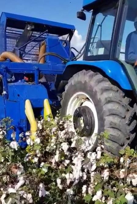 colheitadeira de algodão